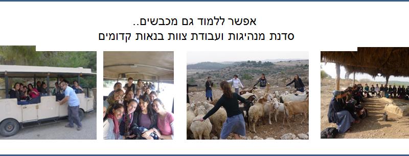 אפשר ללמוד גם מכבשים, סדנת מנהיגות ועבודת צוות בנאות קדומים